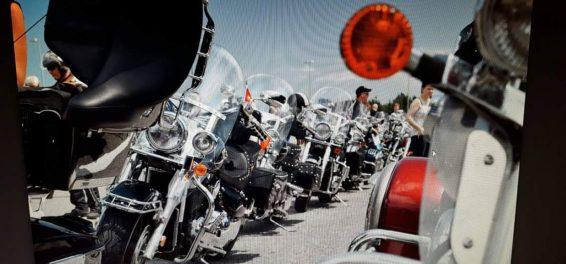 cropped-bikes1